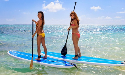 Beginner or Advanced Paddleboard Lesson for One or Two at Serenity Paddleboarding (Up to 57% Off)