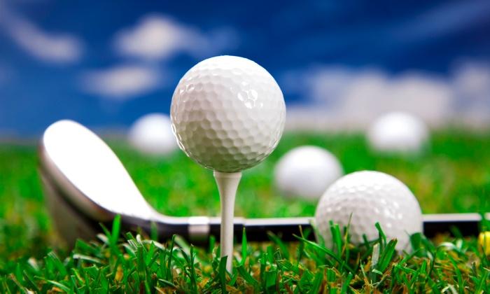 Stony Creek Golf Course - Oak Lawn: Golf Simulator and Round Packages at Stony Creek Golf Course (Half Off)