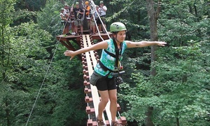 Explore Brown County at Valley Branch Retreat: Zipline Canopy Tour at eXplore Brown County at Valley Branch Retreat (Up to 58% Off). Five Options Available.