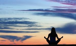 Awaken Your Senses Yoga: 5 or 10 Yoga Classes at Awaken Your Senses Yoga (53% Off)