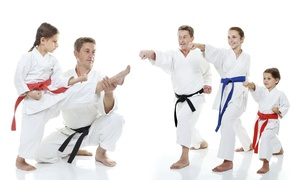 Master Yang's World Class Tae Kwon Do: Month of Martial Arts Classes with Uniform at Master Yang's World Class Tae Kwon Do (Up to 87% Off)