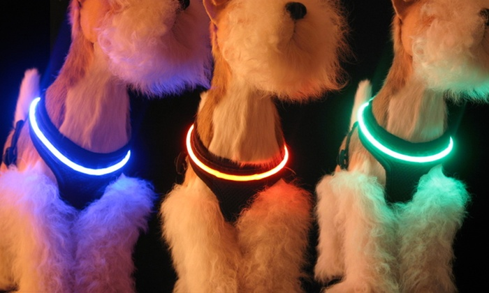 Mhu Ghu LED Dog Harnesses: $9.99 for a Mhu Ghu LED Air-Mesh Dog Harness in Blue, Green, or Red ($39.99 List Price).Free Returns.
