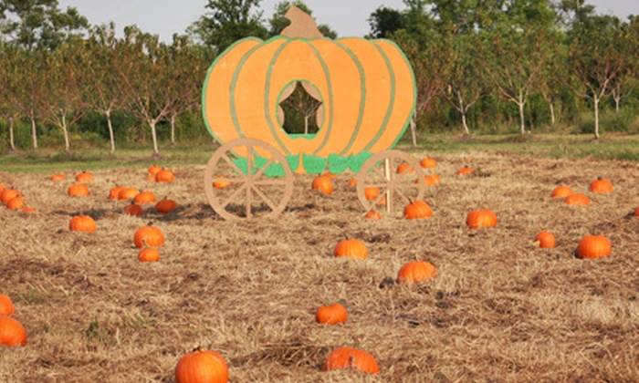 Berryland Farms of Texas - Winnie-Stowell: Fall Activities for Two or Four at Berryland Farms of Texas (44% Off). Six Options Available.