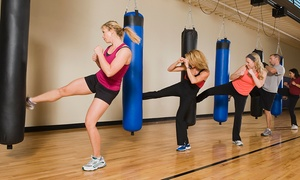 DNJ Fitness: 5 or 10 Kickboxing Classes with Gloves at DNJ Fitness (Up to 75% Off)
