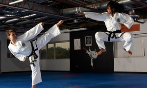 Lee Sukhi Success Martial Arts: 10 Martial Arts Classes or a One-Month Unlimited Membership at Lee Sukhi Success Martial Arts (Up to 90% Off)