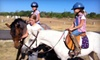 Bel Canto Farms - Dripping Springs-Wimberley: Two, Four, or Six Private Horseback-Riding Lessons at Bel Canto Farms (Up to 71% Off)