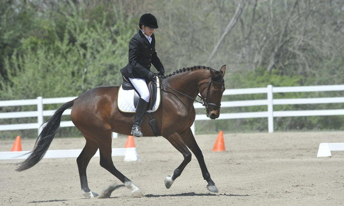 Roberts Equestrian - Liberty: One-Hour Horseback-Riding Lesson at Roberts Equestrian (25% Off)