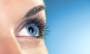 The Lash Lounge: Half or Full Set of Eyelash Extensions at The Lash Lounge (Up to 60% Off)