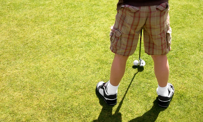 Will Robins Golf Inc - Cherry Island Golf Course: One Month of Golf Lessons for Juniors or a Birthday Party for Up to 10 at Will Robins Golf (Up to 38% Off)