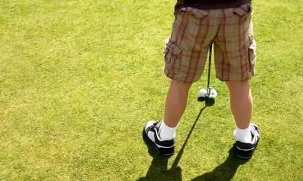 One Month of Golf Lessons for Juniors or a Birthday Party for Up to 10 at Will Robins Golf (Up to 43% Off)