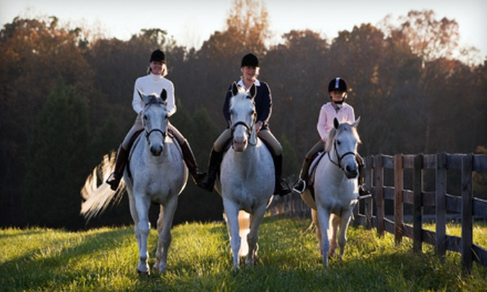 Kindred Spirits Equestrian Facility - Hastings: Horseback-Riding Lessons or Kids' Party at Kindred Spirits Equestrian Facility (Up to 55% Off). Three Options Available.