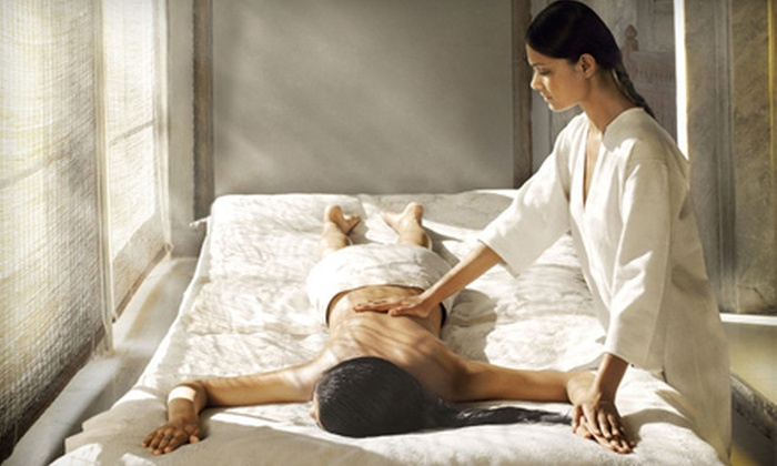 Tropez Aveda Salon and Spa - Natick: Massage and Aveda Aromatherapy Packages at Tropez Aveda Salon and Spa (Up to 58% Off). Three Options Available.