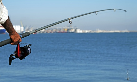 $149 for a Two-Hour Shark-Fishing Trip for Up to Three from Gillz n Thrillz Charters ($255 Value)