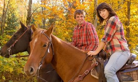 $30 for $60 Worth of Horseback Riding  True Heart Equine Enrichment