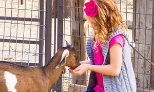 Hee Haw Farms Farmers Market: $20 for General Admission Corn Maze Combo Pass for Two at Hee Haw Farms ($32 Value)