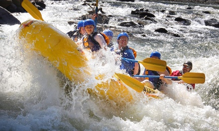 Three-Hour Whitewater Rafting Adventure for One or Two from Whitewater Express (Up to 51% Off)