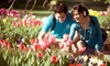 Thanksgiving Point – Up to 51% Off Visits