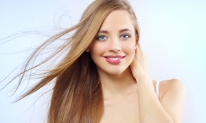 Wendy Ammann at Valencia Salon and Spa: Haircut and Blowout with Color or Highlights from Wendy Ammann at Valencia Salon and Spa (Up to 53% Off)