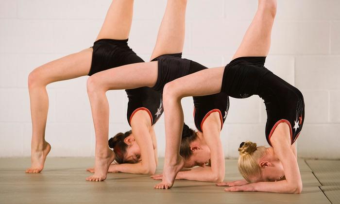 Calgary Acrobatic Studio - Calgary: One or Two Months of Pre-Team Acrobatic Gymnastics Classes at Calgary Acrobatic Studio (Up to 53% Off)