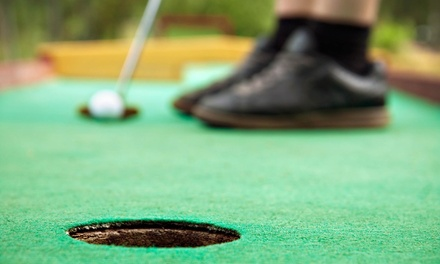 Round of Mini Golf for Two or Four at Gator Golf (45% Off)