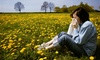 Health Institute of North Carolina/Dr. David Pascal, D.C. - Health Institute of North Carolina/Dr. David Pascal, D.C.: $39 for a Holistic Allergy Treatment at Health Institute of North Carolina/Dr. David Pascal, D.C. ($245 Value)