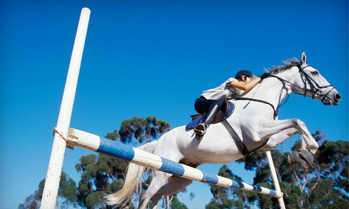 Aberdean Riding Academy - Delray Beach: Summer Camp or One or Two Semiprivate 60-Minute Horseback-Riding Lessons at Aberdean Riding Academy (Up to 69% Off)
