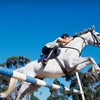 Up to 69% Off Lessons at Aberdean Riding Academy