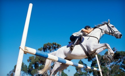 Summer Camp or One or Two Semiprivate 60-Minute Horseback-Riding Lessons at Aberdean Riding Academy (Up to 69% Off)