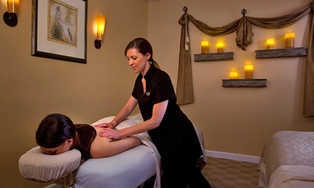 Massage or Facial Spa Package or Couples Massage at Westin Kierland Agave Spa (Up to 44% Off)