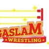 Megaslam American Wrestling