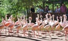 Sylvan Heights Bird Park - Scotland Neck: Visit with Corn-Maze or Scavenger-Hunt Adventure for Two, Four, or Six at Sylvan Heights Waterfowl Park (Up to 61% Off)