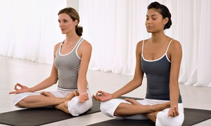 Sramana Yoga: $25 for Five Yoga Classes at Sramana Yoga ($55 Value)