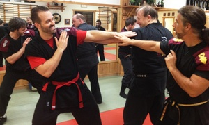 Tampa Quest Martial Arts: One Month of Martial Arts Classes for One or Two Adults at Tampa Quest Martial Arts (Up to 75% Off)