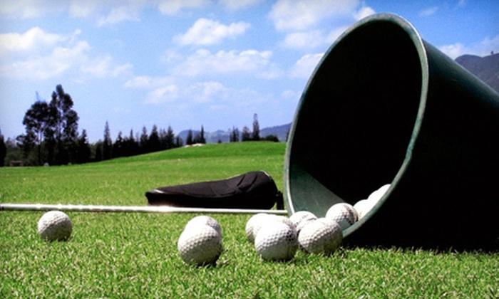 Capital Golf Center - Wake Forest: Three Medium Buckets of Driving-Range Balls at Capital Golf Center (63% Off)