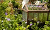 52% Off Plants and Gardening Supplies at Harb's Oasis
