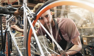 DON JOHLES BIKE WORLD, INC.: Basic or Major Bike Tune Up at Don Johles Bike World Inc. (Up to 40% Off). Six Options Available.