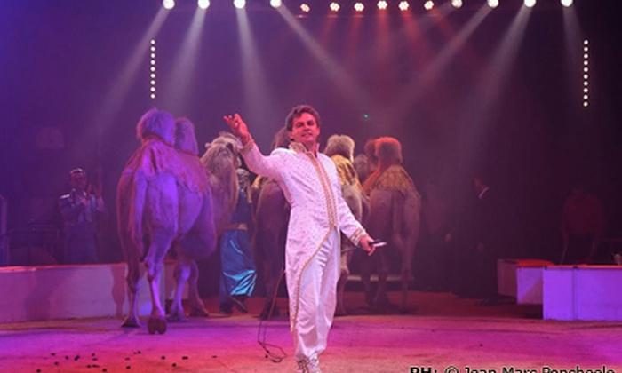 Circo di Mosca - Castelfranco Veneto: Circo di Mosca - 2, 3 oppure 8 biglietti per lo spettacolo circense da 24,90 €