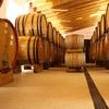 ⏰ Degustazione di vini e visita