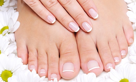 Regular and Shellac Mani-Pedis at Catalia Hair Extensions & Spa (Up to 56% Off). Three Options Available.