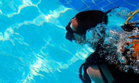 Bautismo de buceo en piscina para uno o dos desde 14,95 € Oferta en Groupon