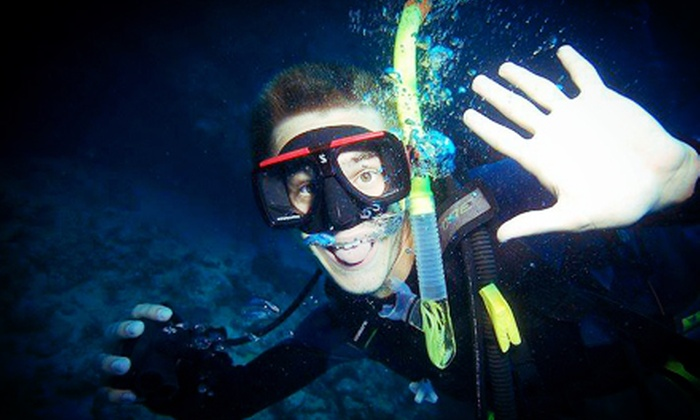 Rockfish Divers - Brentwood Bay: C$32 for a Two-Hour Saanich Inlet Snorkeling Tour with Rental Gear from Rockfish Divers (C$65 Value)