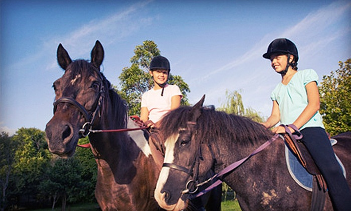 RR Saddle Club - Mill City: One or Four 90-Minute Beginner's Group Horseback-Riding Lessons at RR Saddle Club (Up to 61% Off)
