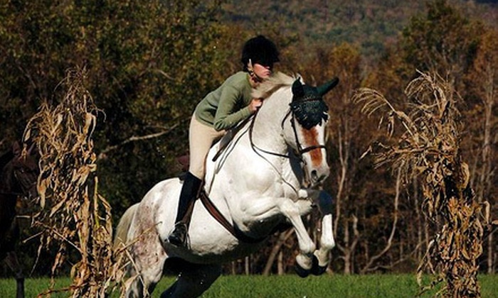 Different Times Equestrian Ventures - Gansevoort: Two or Four Private Horseback-Riding Lessons from Different Times Equestrian Ventures (Up to 59% Off)