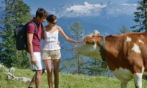 Sand Creek Farm: Two-Hour Morning Cow-Milking Experience for Two or Four at Sand Creek Farm (Up to 32% Off)