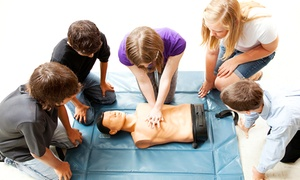 National Health Care Provider Solutions: Life-Saving Certification from National Health Care Provider Solutions (Up to 56% Off). Three Options Available.
