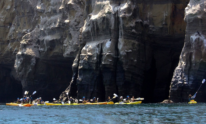 Everyday California - La Jolla Shores: $25 for a 90-Minute Sea-Cave Tour from Everyday California (Up to $65 Value)