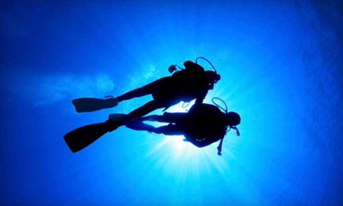 Below H2O Scuba Diving Academy - Edgewood Lake: Discover-Scuba, Refresher-Scuba, or Open-Water Certification Courses at Below H2O Scuba Diving Academy (Up to 66% Off)