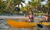 Miami Kiteboarding - North Beach Concession: SUP or Kayak Rentals from Miami Kiteboarding (Up to 62% Off). Five Options Available.
