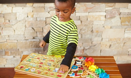 $8 for $20 Worth of Educational Toys from ToyTown