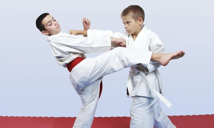 $130 for $372 Worth of Martial-Arts Lessons — Martial Arts Training Center